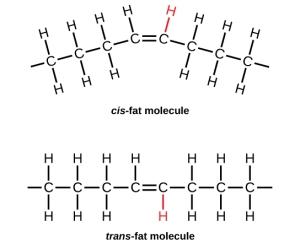 trans and cis fats molecules