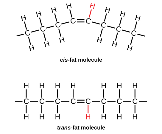 trans and cis fats molecules