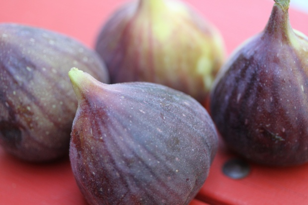 (Photo Credit: Figs by Keith McDuffee/Flickr Commons)